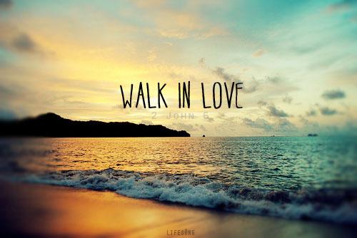 Walk in Love: Episcopal Beliefs and Practices by Scott Gunn