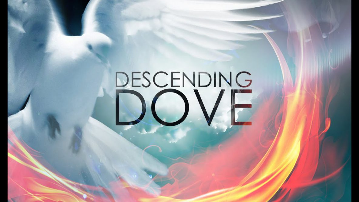 Descending Dove