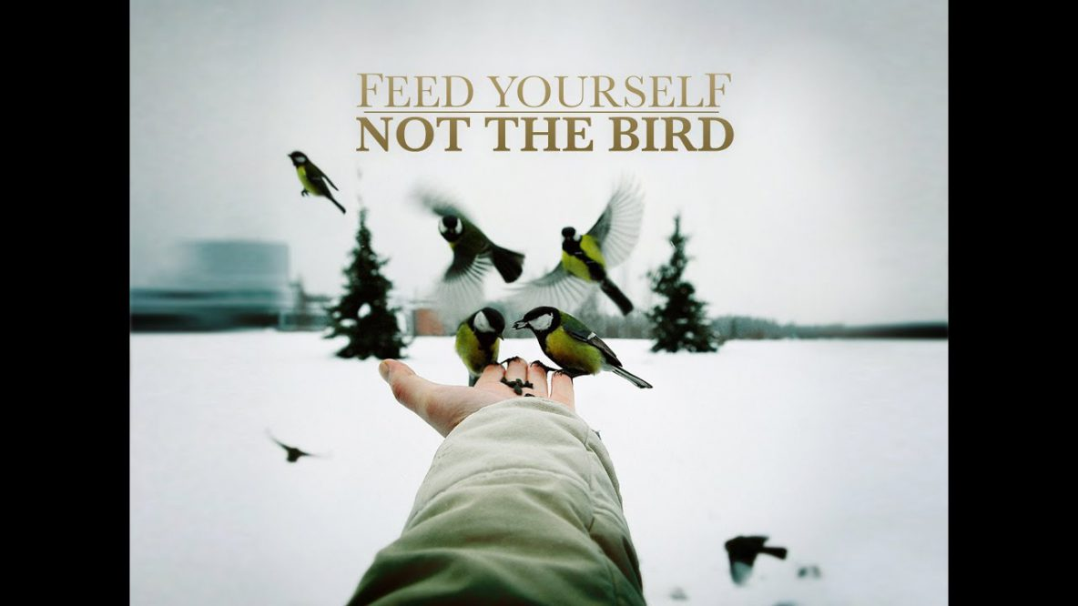 Feed Yourself, Not the Bird