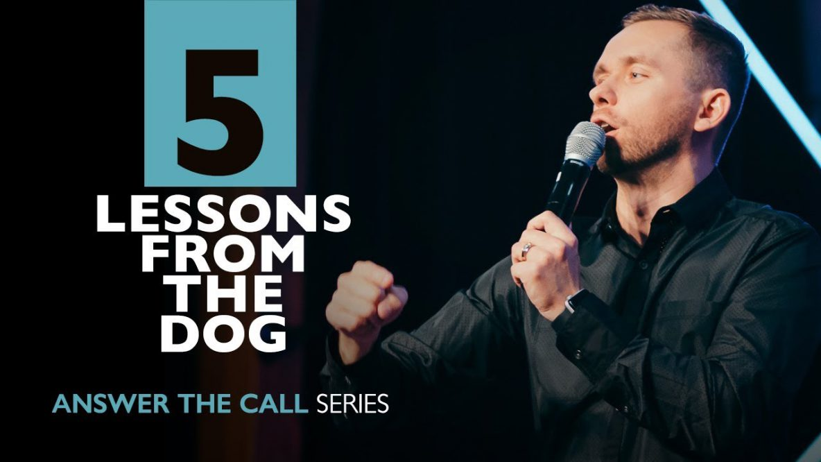 Lessons from the Dog